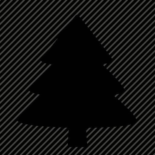 coniferous, fir tree, spruce, tree, wood icon