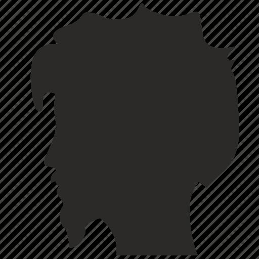 beard, bum, hair, head, man, shaggy, style icon