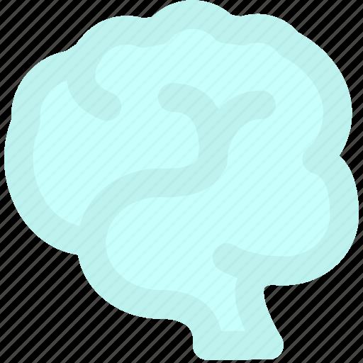 brain, creative, intelligence, think, thinking icon