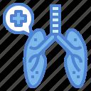 breathing, lung, medical, organ