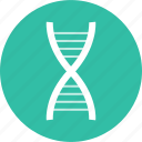 dna, healh, science, strand icon