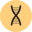 dna, health, science, strand icon