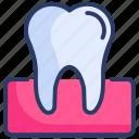 dentist, dentistry, gum, gums, healthcare, teeth, tooth
