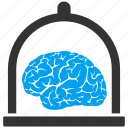 bulb, human, knowledge, mind, organ, science, user brain icon