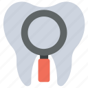dental checkup, dental treatment, dentist, dentistry, orthodontic icon
