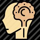 brain, checkup, head, nervous, somatic, system