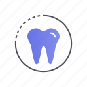 care, dental, dentist, teeth, tooth icon