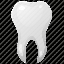 care, dental, dentist, health, medical, medicine, orthodontic, stomatolog, stomatology, tooth icon
