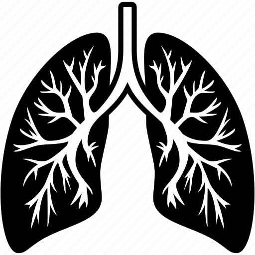 anatomy, body, breath, breathe, healthcare, lungs icon