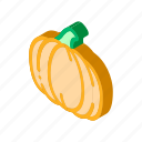 05food, autumn, drawing, healthy, organic, pumpkin, vegetarian