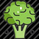 broccoli, food, vegan, vegetable, vegetarian icon