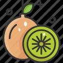 diet, healthy food, kiwi, organic, vegan icon