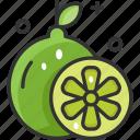 ingredient, lime, organic, vegan, vegetarian icon