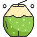 coconut water, coconuts, food, fresh, water icon