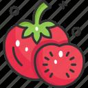 diet, food, fruit, tomato, tomatoes icon