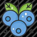 blueberry, fruit, healthy, vegan, vegetarian icon
