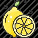 citrus, citrus fruit, fruit, lemon, lime icon