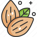 vegan, almond, healthy food, vegetarian, almonds icon