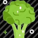 broccoli, food, vegan, vegetable, vegetarian