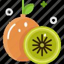 diet, healthy food, kiwi, organic, vegan