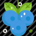 blueberry, fruit, healthy, vegan, vegetarian