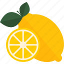 food, fruits, herbal, lemon, tea icon