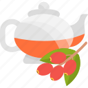 fruits, herbal, tea, viburnum icon