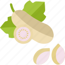 aubergine, eggplant, food, herbs icon