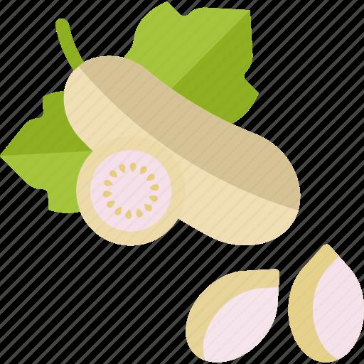aubergine, eggplant, food, herbs icon