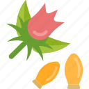 beans, flower, herbs, plant icon
