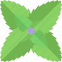 flower, herbs, seed, sheet icon