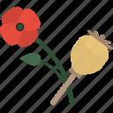 flower, herbs, sheet, stalk icon