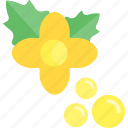 flower, food, herbs, seed icon