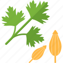 greenery, herbs, plant, stalk icon