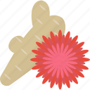 flower, food, herbs, horseradish icon