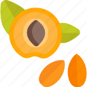 food, herbs, pit, peach icon