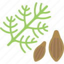 herbs, plant, seed, sheet icon