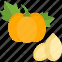 food, herbs, pumpkin, seed icon