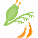 food, herbs, plant, seed icon