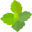 flavor, flavoring, herb, leaves, mint, peppermint, spearmint icon
