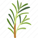 flavoring, fragrance, garden, herb, plant, rosemary, sprig icon