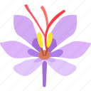 coloring, crocus, dye, flower, saffron, spice, threads icon