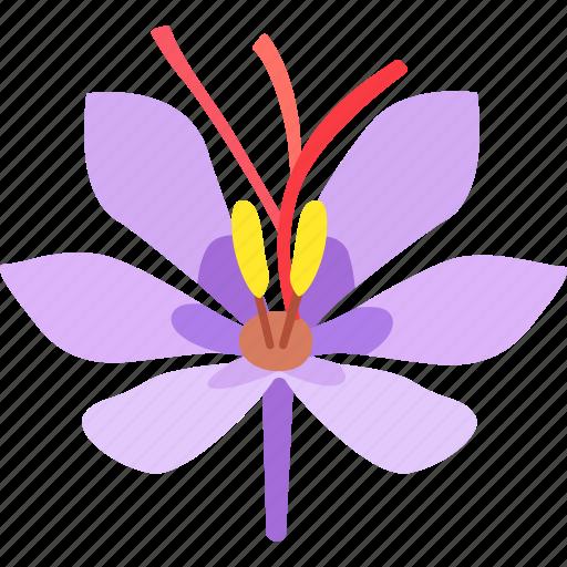 Coloring Crocus Dye Flower Saffron Spice Threads Icon