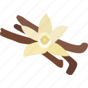 baking, extract, flavoring, orchid, pod, spice, vanilla icon