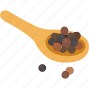black pepper, cooking, pepper, peppercorn, seasoning, spice icon