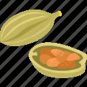 cardamom, cardamon, cardamum, pod, seed, spice icon