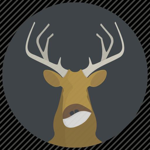 animal, animals, deer, elk, horns, moose, wild animal icon