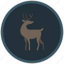 christmas, deer, reindeer, santaclaus, winter icon