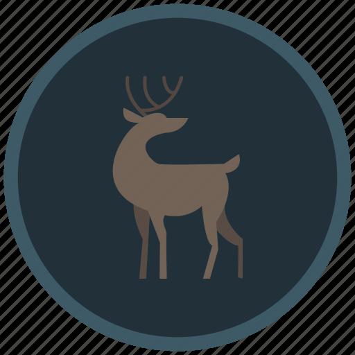 christmas, deer, reindeer, santaclaus, winter icon