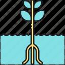 gardening, hydroponic, hydroponic gardening icon